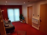Stunning 1 Bed Furnished Apartment in Nottingham City Centre (Lace Market) £745 per month
