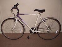 "Raleigh Pioneer Classic 21"" Hybrid/Commuter/Town Bike"