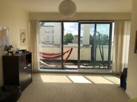 Huge double room in split level city centre flat available for short term let
