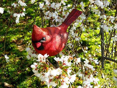 Large Resin Red Cardinal Bird Figurine 5.5