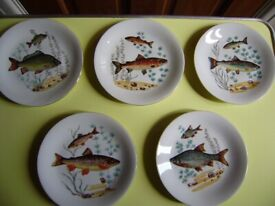 Plates, set of 5 plates, lovely design, perfect condition