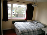 Attractive Double Room for Professional (Mon-Fri Only)