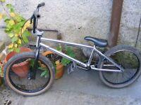 BMX bike..... Blank Compound 8.0.