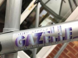 TONY LITTLE's GAZELLE XL FREESTYLE STEPPER
