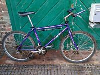 Dawes hard track special edition bicycle