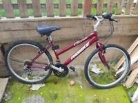 Adult mountain bike 18x speed good brakes and tyres