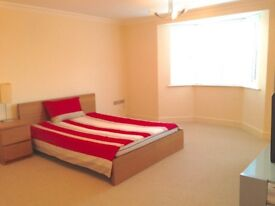 *Very Specious Double Room in Luxury Clean Modern Quiet non-smoking Young Professional House *