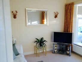 Beautiful Double Room PLUS Own Living Room!!!