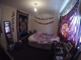 large double room with a big window & cat