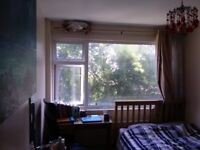 Double room in Forest Hill, lovely view, clean air, green area, quite, 15 min to central London