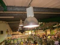 LIGHT FITTINGS AND BULBS TOTAL OF 35 SELLING £50 EACH
