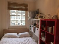 Double room in charming 5 bedroom Kensington flat- now available