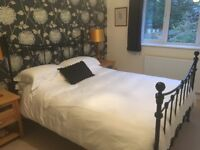 King Size Black Metal Bed from Laura Ashley