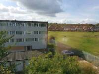 3 bedroom large apartment to rent