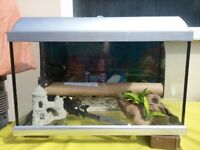 Fish tank size L60xW30xH40cm