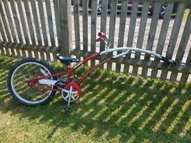 Trail a bike starter tag a long