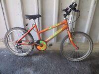 "Orange Mountain Bike – 20"" Wheels"