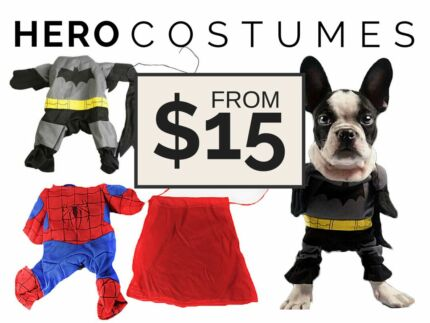 Halloween Hero Costumes for Cats & Dogs Helensvale Gold Coast North Preview