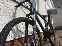 mountian bike/triad 3.0 revolution