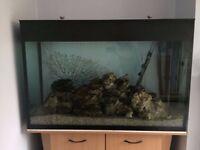 Unbranded custom-built black lined 265 litre aquarium with beech effect cabinet