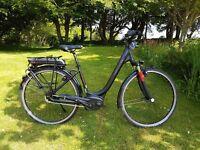 electric bike Hercules Roberta R8 New