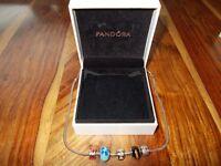 (Genuine) Pandora Necklace & (4) (Charmss)