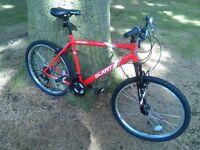 """2 x Apollo Slant Mountain Bike (Frame sizes: 17"""" and 20"""")"""