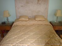 Designer Quilted Bedspread & 2 Cushions