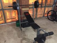 Pro Power Bench and weights
