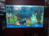 FISH TANK WITH EXTERNAL PUMP,LIGHT,HEATER,WITH STAND