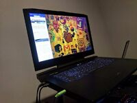 (XMG)P870DM(G) | IPS G-Sync | De-lided i7-6700k | 8GB GTX 980 (Desktop) | 32GB RAM | 1.5TB SSD combo