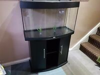 Juwel vision 180 fish tank and fluval 306 external filter