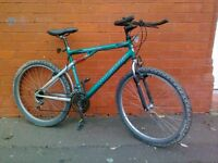 Pulsator mountain bike - Michelin tyres - Adult bike .