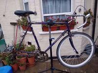 Vintage Racer bike Frame...Ideal singlespeed/Fixie conversion xxx