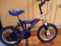 Raleigh 10 inch boys bike