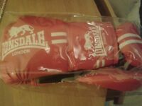 LONSDALE BOXING GLOVES & LONSDALE CONTENDER HOOK AND JAB PADS
