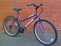 Universal mountain bike- ready to ride !