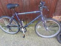 mens raleigh mountain bike with lock £45.00