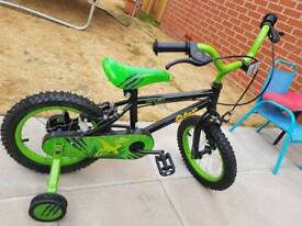Boys dinosaur bike