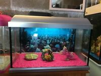 65l fish tank 2 ft full set up with heater light filter lid nice pink gravel nice ornament all work