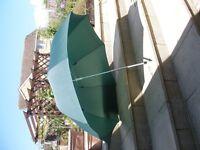 Green umbrella never used