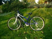 Nearly-New Mountain Bike