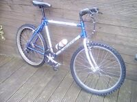 ADULT CARRERA INDEX MOUNTAIN BIKE WITH 21 GEARS