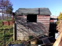 Dilapidated Old Garden Shed Hut 6'x4' - Free to Takeaway