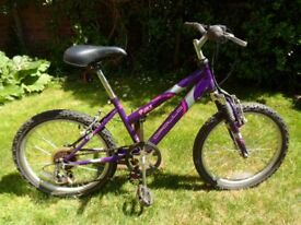 Childs Apollo bicycle, suit 8 to 10 year old, 6gears. £15.