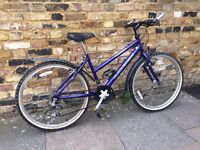 RALEIGH Adult bicycle in top condition