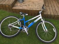 Triumph Figaro WOMENS BIKE Mountain Bicycle Ladies 18 inch GOOD CONDITION