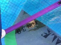 3.9m windsurf sail