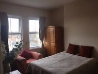 A large double room in a nice share flat near central london