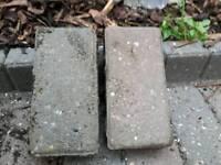 Brick pavers ( in Brighton not Lewes )